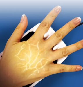 Finger Vein Recognition Bioenable