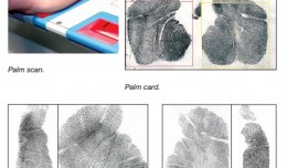 automated-fingerprint-palm-print-system