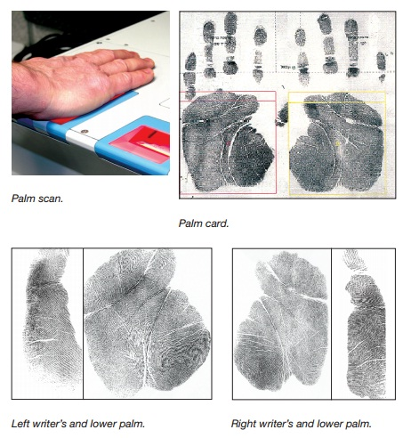 Automated Fingerprint Palm Print System Bioenable