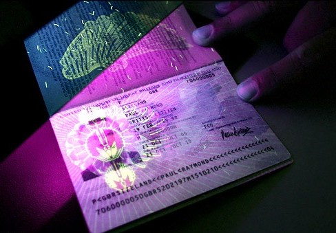Biometric Passport Bioenable