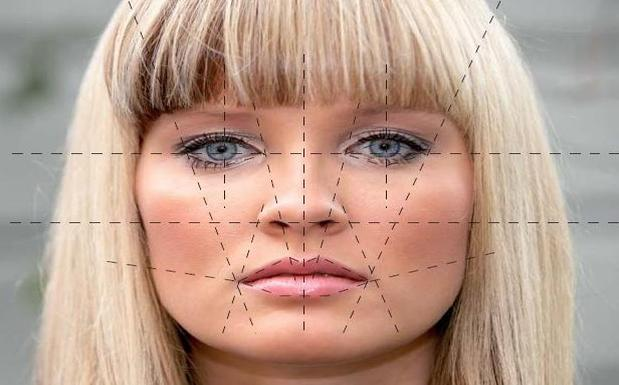 free face recognition software – BioEnable